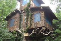 Treehouses / by Marsha ƸӜƷ