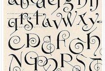 Fonts / by Angela Leddy