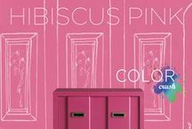 Color Crush: Hibiscus Pink / Color Crush Contest – Hibiscus Pink: Studio Chic (end March 2014)  / by Grandin Road