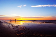 Virginia Beach / by Kathy Barnes
