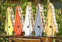 Birdhouses / by Kathy Barnes