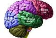 Aphasia / Frontal Lobe Aphasia / by Jeanne Young