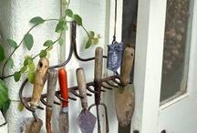 garden ideas / by Anne Moyle