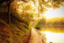 ! Peaceful ! / by Jennifer Aiello