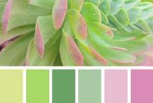 Color Pallet / by Karen Sanchez
