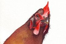Nobody's here but us chickens! / by Diane Myers