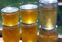 Recipes: Misc Preserving Canning / Butters Canning Cheese Condiments Curd Dehydrating Dressing Drying Extracts Freezing Infused Jam Jelly Ketchup Marmalade Mixes Pesto Pickles Pickling Preserves Preserving Purée Salsa Sauce Seasonings Spreads Storage Syrups / by Molly
