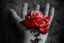 Dark roses / by ☠ кαяєи ¢σияα∂ ⋆ кιἥg ☠