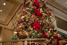 Holidays : Christmas Cheer / by Jill Maxwell