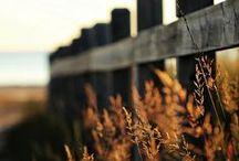Kool Kansas  / by A2Z Photography by Jana Butcher