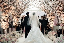 Dream Wedding / by Courtney Cottrill