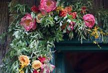 Floral/Unusual Plant Arrangements / Plants both interior-exterior. Unusual containers, vignettes, color story, florals that are custom/unique / by Ursula Koenig Designs