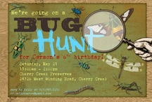 Bug Hunt Birthday Party / by Melinda Hecht