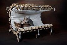 Products I Love / by Miri Shilo- Brooklyn Cat