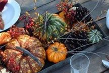 seasonal decor / by wkbee