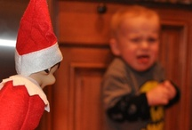 Elf on a Shelf Nightmare Scenarios / by Robin Miner-Swartz