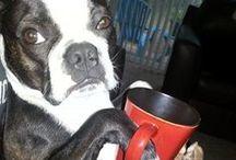 Good morning! / Nada como un buencafé para arrancar bien la mañana en un día lleno de trabajo en La Fábrica de imagen. / by La Fábrica de Imagen