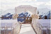 Aspen Winter Wedding  / by Erica Wagner