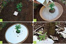 Eco friendly ideas / by Jenna Mell