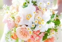 SPRING Wedding Pretties / by Arkansas Bride Magazine