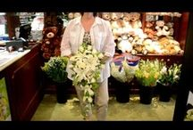 Wedding Tips for Princeton NJ Brides  / Little helpful tips to help while planning weddings. We love creating wedding floral designs and working with other area professionals in the wedding field.  / by Monday Morning Flower and Balloon Co