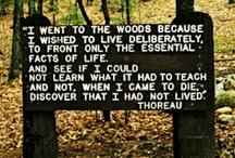 Love these lines! / by Kim Boyett