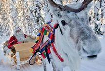 Holiday cheer / by Ashley Newgard