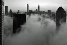Chicago / by Niki Cutler-Dague