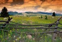 Wild West - Montana / by Jonelle Cochran