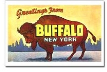 ~This Is How We Roll In Buffalo~ / by Lynn Shriver