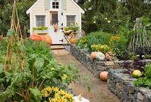 Garden Ideas / by Shanda Fitte @ My Intentional Play