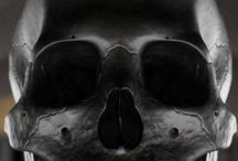 Skull / by OBJ Negra