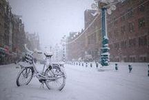 Seasons • Winter / by Stephanie Roell