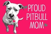 Pit Bull Loving / Welcome all Pit Bull lovers! Haters be gone Let's pull together and end BSL for good / by Jenna Marie