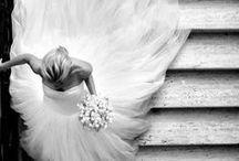 An Elegant Affair / We're getting married! / by Ciara Lambrecht