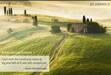 Wandering Wisdom / by Jet Airways India