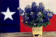Proud Conservative Texan! / The political pins only reflect my opinion. I realize that not everyone agrees with me. :) / by Stephanie Stovall