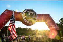 Marathons / by Laura Ortman