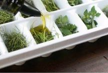 Cooking Tips and Tricks / How to test for egg freshness, how to freeze herbs, how to keep souffle from falling, all the tips and tricks you could ever want in the kitchen are right here.  / by Beth Stedman