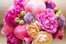 Fab Flowers / Glorious flowers and more flowers! / by Robyn Holstein
