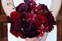Wedding / by Kayla Marie Schneider