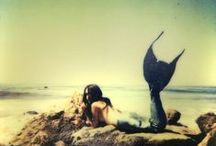 mermaid. / by Emmy Fischbeck