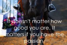 Passion / Horses, and pictures of horses, I love. / by Jessica Anderson