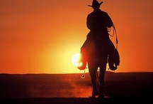 Western Sunset / by Daphne Freeman