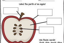 Apples & Johnny Appleseed / by Valerie McLaughlin