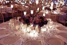Jacq's Winter Wedding Ideas / by Jacque Diane