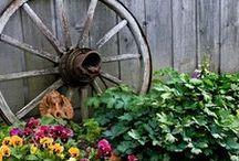 Yard decorating ideas / by Romona Wright
