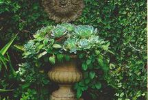Flowerpetals Garden Yard Vinettes Planters / \♥/ I love flowers, garden, outdoors, planters and all pretties  / by Marilyn Martin
