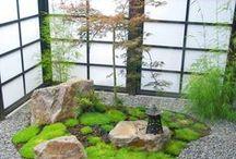 Asian, Japanese, Chinese, Zen, Pagoda / by Marilyn Martin