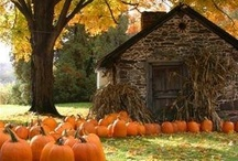 Fall Decorating / by GreyLaneHome